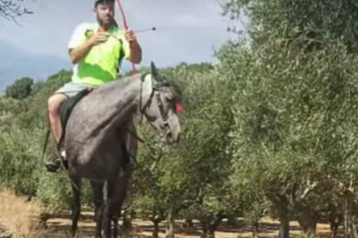 Ο Κυπάρισσος τερματίζει το καλτόμετρο